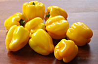 Sunrise_yellow_peppers-sm